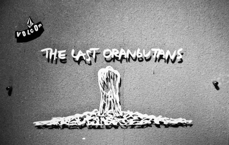 The Last Orangutans Post Image