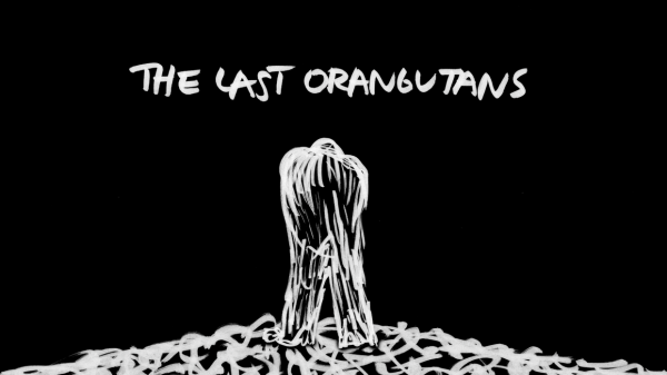 thelastorangutans-movietitlecard