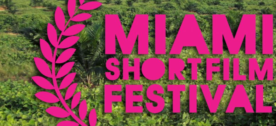 TLO-MiamiFilmFestival